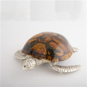 Large Seaturtle with yellow tiger pen shell