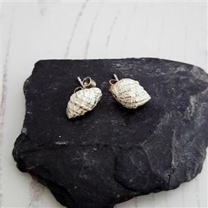Silver Seashell Stud Earrings | Gifts for Her | MyGiftGenie