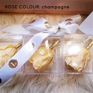 One Year Roses in Crystal Perspex Boxes | Luxury Flowers | MyGiftGenie