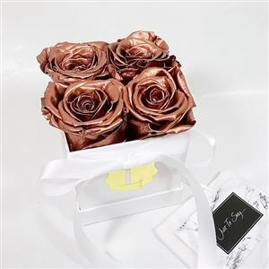 4 x Copper Luxury Real Roses in a box